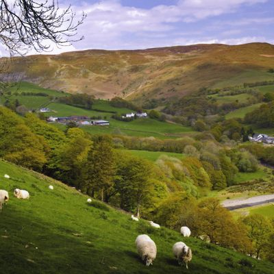 Farming and Textiles in Wales