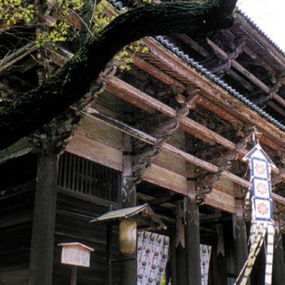 Nara Gate
