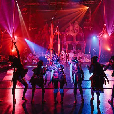 Circus Arts - Profiles