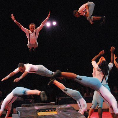 Circus Arts - Circus Harmony